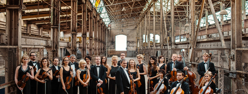 PROFILE PICTURE ORCHESTRA I